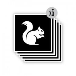 pochoir écureuil